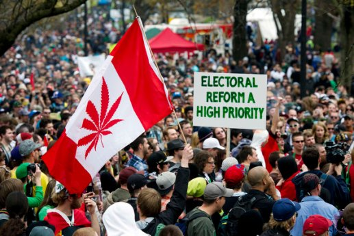A man holds up a flag resembling the Canadian flag with a marijuana leaf in the middle at The Global Marijuana March in support of legalizing marijuana in Toronto