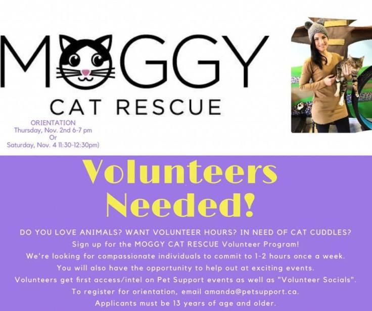 volunteer-open-house-poster