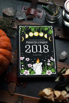 2018-magical-planner-2